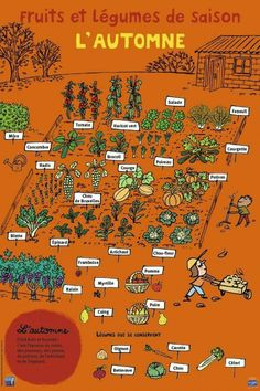 Potager gardening stress attraction, utility and diversity by planting vegetables and flowers in groups potager garden ideas Potager Bio, Potager Garden, French Phrases, French Words, French Education, French Classroom, French Language Learning, French Lessons, Teaching French