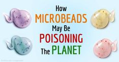 Microbeads, which are tiny plastic pellets that absorb toxins from the water, could be eaten by a wide variety of marine life and, eventually by humans. http://articles.mercola.com/sites/articles/archive/2015/06/06/microbeads.aspx