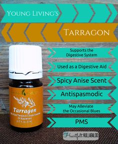 Young Living's Tarragon. Supports the digestive system, used as a digestive aid, spicy anise scent, antispasmodic, may alleviate the occasional blues, PMS. #essentialoils #undertwentydollars #heartfelthullabaloo