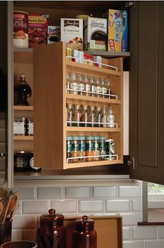 Love this swing out spice shelf! Smart, easy way to organize spices. And it's affordable, too.