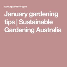January gardening tips | Sustainable Gardening Australia