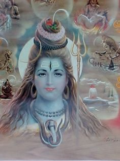 Shiva Life