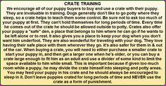 Australian Shepherd Training Tips, including; Socialization, Nutrition, Discipline, Training and Uses. Dog Training Methods, Puppy Training Tips, Crate Training, Training Your Puppy, Training Pads, Training Schedule, Training Collar, Training Classes, Australian Shepherd Training