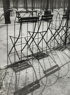 André Kertesz Artcurial Jardin des Tuileries à Paris (1927)