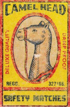 Camel Head, matchbox