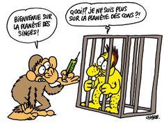 CHARLIE HEBDO's 10 Best Animal Rights Cartoons | PETA's Blog | PETA