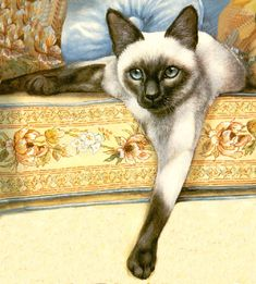 Siamese Cat - Photo Pattern Cross Stitch - original artist unknown