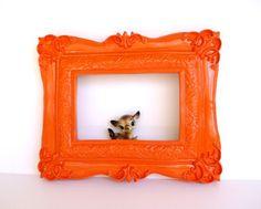 Cute! Tangerine frame.