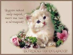 Name Day, Cute Art, Wallpaper, Birthday, Animals, Thoughts, Pictures, Birthdays, Animales