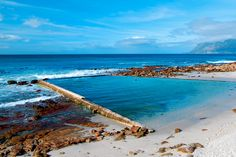 The Best Natural Swimming Pools in Cape Town – The Inside Guide Natural Swimming Pools, Natural Pools, Water Supply, Pool Designs, Luxury Villa, Cape Town, South Africa, Villas, City