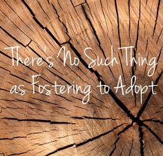There's No Sich Thing as Foster to Adopt: Before you bristle too hard at the title, stick with me. Back when Milkman and I started our journey to welcome non-biological children into our home, it was with one goal in mind: adoption. We kne… Private Adoption, Open Adoption, Foster Care Adoption, Foster To Adopt, Adoption Shower, Adoption Party, Foster Parent Quotes, Foster Parenting, Parenting Tips