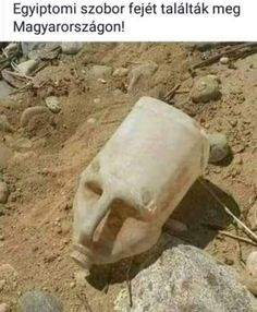 This container's shadows make it look like a face Alien Origin, Hidden Images, Haha So True, Arabic Jokes, Strange Photos, S Pic, Dumb And Dumber, Funny Animals, Funny Pictures