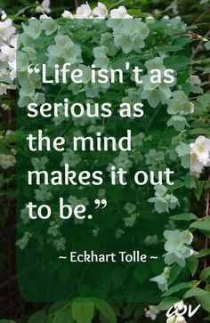 Find the joy from within, enjoy life a little less seriously,