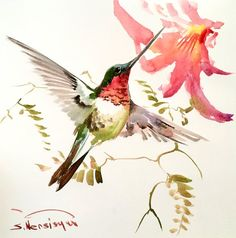 Flying Hummingbird Original watercolor painting 11 by ORIGINALONLY