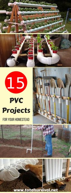 DIY Tips, DIY Ideas, home and Household Tips:15 PVC Projects for Your Homestead. PVC pipes aren't just useful for plumbing, they are a good material for a lot of DIY projects. Besides the fact they are quite cheap, these particular type of pipes are easy to work with, light to move around and durable! #diy #diyproject #homestead #homesteading #pvc