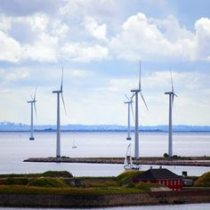 How Denmark Became the Nation Most Likely to Be Powered by Wind