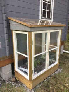 Old windows in the greenhouse. Backyard Greenhouse, Small Greenhouse, Greenhouse Plans, Veg Garden, Garden Beds, Farm Gardens, Outdoor Gardens, Vida Natural, Cold Frame
