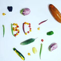 #夏野菜 #organic #無農薬 #colorful 見たことない夏野菜が沢山 大切に育てられた野菜達 美味しくない訳がありませんシンプルにお料理しましょう お料理picは後ほど #フィトケミカル #紫ピーマン #赤毛うり #ズッキーニ #トマト #オクラ #美しい #beautiful #管理栄養士