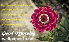 Just follow the wide collection of Good morning 3d wallpapers free