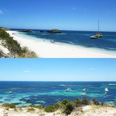 #throwbackthursday #tbt #australia #rottnestisland #clear #water #blue #sky #beach #ocean #tropical #memories #takemeback #nature by jeanvdwes http://ift.tt/1L5GqLp