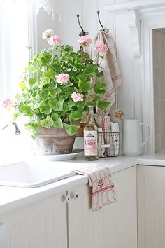 I love the color of the flowers and distressed pot.