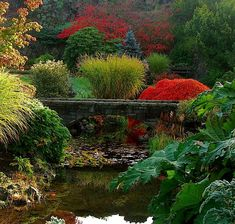 Queen Elizabeth Park ~ Vancouver ~ British Columbia ~ Canada