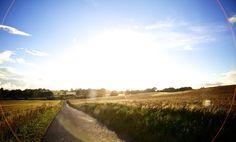 Prachtige foto van het landschap in Funen, ookwel het tuineiland genoemd. #Denemarken #rondreis