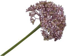Kunstbloem Wild Leek Lidia van Silk-Ka ✓Voor een mooi thuis ✓Online kopen ✓Gratis thuisbezorgd vanaf €20 ✓30 dagen retourrecht Dandelion, Hair Accessories, Flowers, Plants, Products, Fake Flowers, House Decorations, Style, Spring