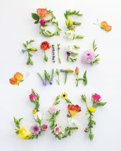 Flower Words, Flower Quotes, Art Floral, Floral Design, Flower Prints, Flower Art, Art Flowers, Edible Flowers, Creative Photography