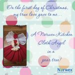 The 12 Days of Christmas, Norwex Style - Norwex Movement