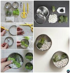 Mini Tin Can Wall Terrarium-DIY Mini Fairy Terrarium Garden Ideas