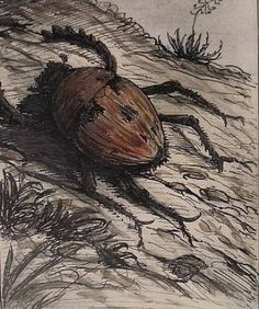 """""""Der Goldkäfer"""" [The Gold Bug] Alfred Kubin 1908 india ink and water color on paper Vienna, Austria Drawing Art, Drawing Sketches, Art Drawings, Alfred Kubin, India Ink, Vienna Austria, Spiders, Snakes, Art"""
