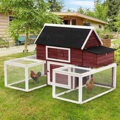 🔥 [MONEY BACK GUARANTEE! ACT NOW] =>  If you cannot wait to learn about  Build a cheap chicken run , it's not a big surprise .Many people bought poor quality coop because they don't know this simple tip,Click here to reveal it now. This will be gone soon Chicken Coop Designs, Diy Chicken Coop Plans, Easy Chicken Coop, Clean Chicken, Portable Chicken Coop, Backyard Chicken Coops, Building A Chicken Coop, Chicken Runs, Chickens Backyard