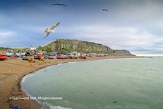 Hastings: Old town beach