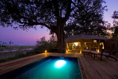 private plunge pool at Zarafa Lodge. Plunge Pool, Top Place, Luxury Camping, African Safari, Africa Travel, Hotels And Resorts, Mansions, House Styles, Places