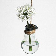 Up cycled light bulb