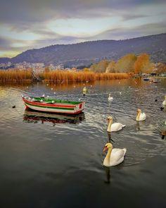 """344 """"Μου αρέσει!"""", 71 σχόλια - 📷G🍁E🌎O♊R🍃G👍E (@aba_tziz) στο Instagram: """"#kings_greece #walkingreece #expression_greece #greece_excellent #greecelover_gr #greece_all…"""" Instagram Accounts, Aba, World, Videos, Photos, China, Pictures, The World"""