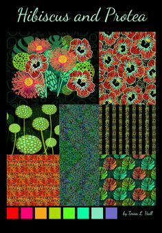 Hibiscus and Protea Collection by Tessa Hall