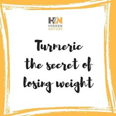 💛 Turmeric is shown to be helping you deal with obesity and its related metabolic disorders. While increasing your intake of turmeric isn't a lone strategy for weight loss, it may help you mitigate the inflammation associated with obesity and give you a boost in fat burning.