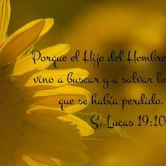 LUCAS 19, 1-10  