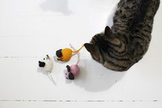 cat toys hand knit