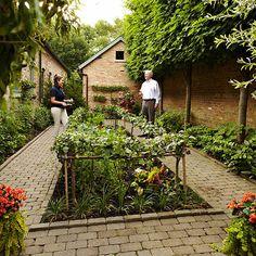Otoño Vegetable Gardening