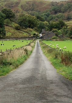 The long road home by crafty1tutu (Ann) Glenridding, Lake District, England
