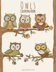 Buhos de Coloring Book 1