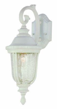 Trans Globe Lighting 4020 Wh 20 Inch 1 Light Outdoor Down Wall Lantern