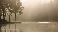 """Morning light and mist at Pang Ung Mae Hong Son Go to http://iBoatCity.com and use code PINTEREST for free shipping on your first order! (Lower 48 USA Only). Sign up for our email newsletter to get your free guide: """"Boat Buyer's Guide for Beginners."""""""