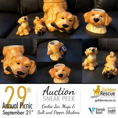 Auction Items, Cookie Jars, Scooby Doo, Life Is Good, Picnic, Adoption, Lion Sculpture, Events, Canning