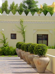Spanish Garden Design Ideas, Pictures, Remodel, and Decor - page 2
