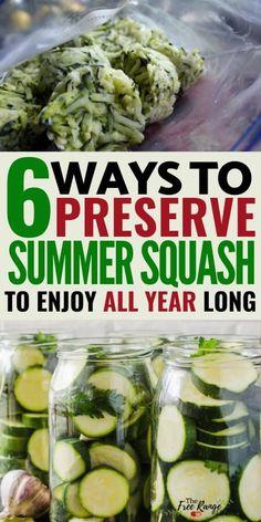 Preserving Green Beans, Preserving Zucchini, Preserving Food, Canned Zucchini, Canning Squash, Squash Relish Canning Recipe, Freezing Squash, Can You Freeze Squash, Cucumber Relish Recipes