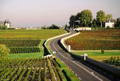 Medoc Road Bordeaux Wine, Bordeaux France, Monuments, Wine Investment, Bordeaux Vineyards, Grands Lacs, Famous Wines, Wine Magazine, Wine Guide